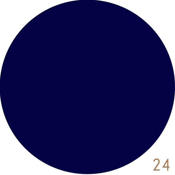 Navy Blue (24)